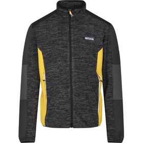 Regatta Coladane Fleece Jacket Men black/ash